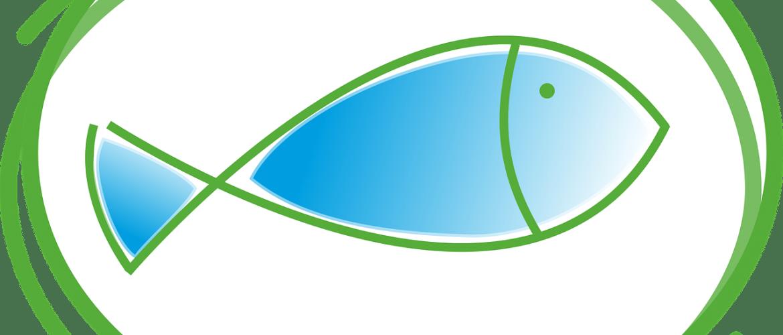 fish-2063712_1280